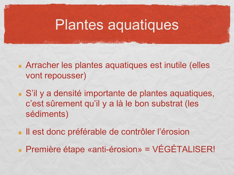 Plantes aquatiques Arracher les plantes aquatiques est inutile (elles vont repousser) Sil y a densité importante de plantes aquatiques, cest sûrement