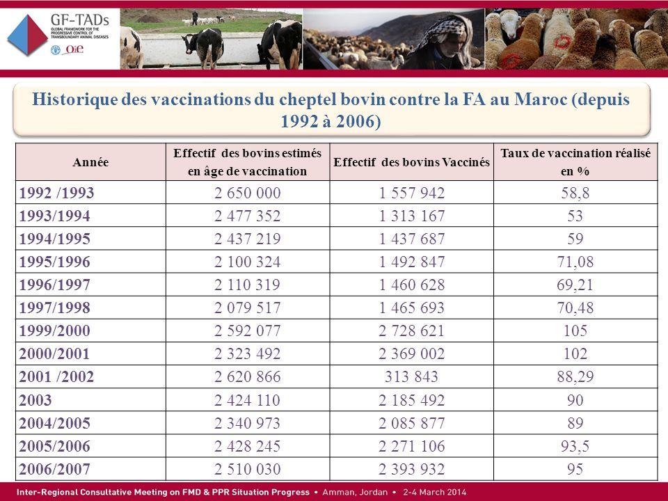 Historique des vaccinations du cheptel bovin contre la FA au Maroc (depuis 1992 à 2006) Année Effectif des bovins estimés en âge de vaccination Effect