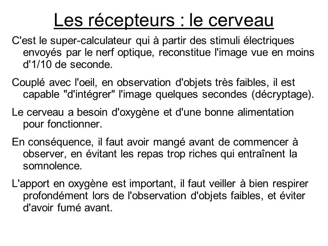 Les récepteurs : le cerveau C'est le super-calculateur qui à partir des stimuli électriques envoyés par le nerf optique, reconstitue l'image vue en mo