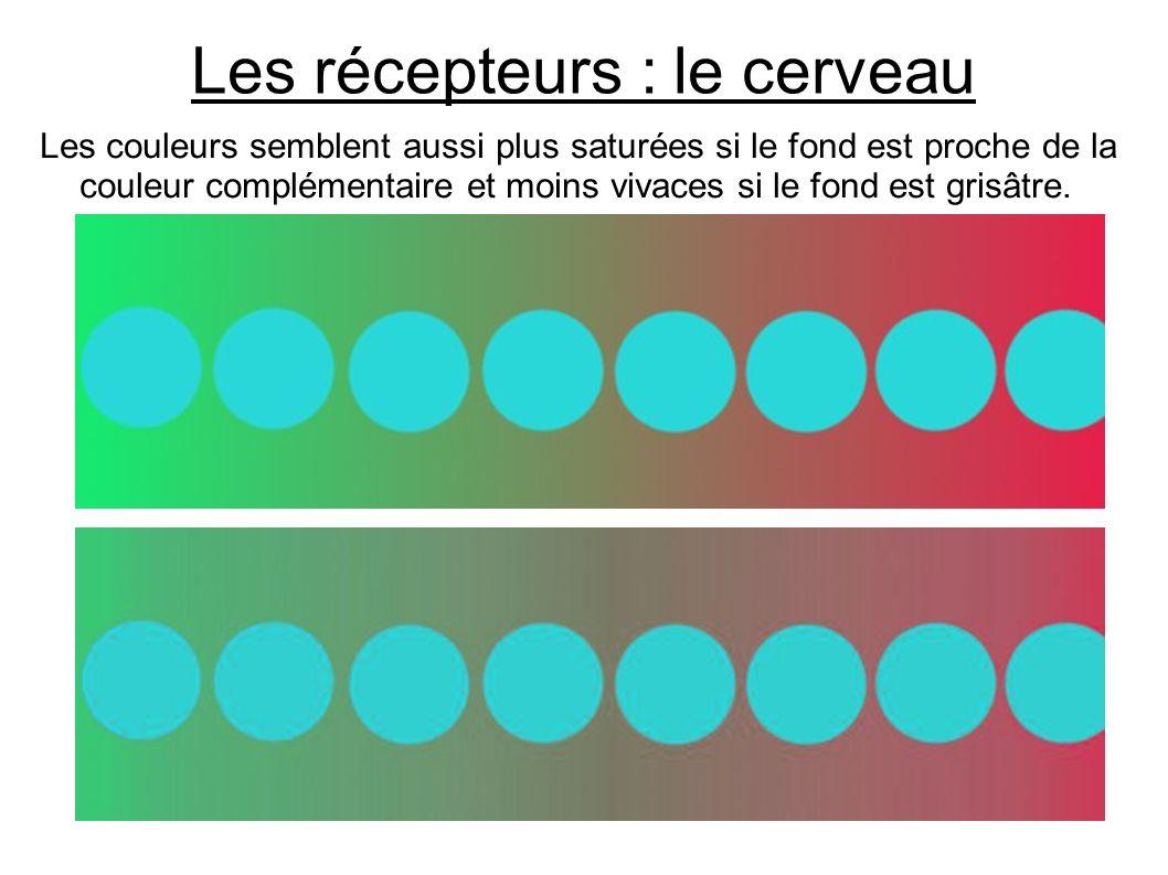 Les récepteurs : le cerveau Les couleurs semblent aussi plus saturées si le fond est proche de la couleur complémentaire et moins vivaces si le fond e