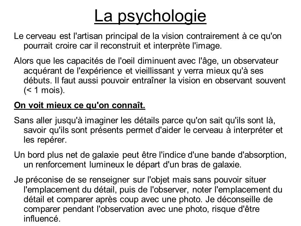 La psychologie Le cerveau est l'artisan principal de la vision contrairement à ce qu'on pourrait croire car il reconstruit et interprète l'image. Alor