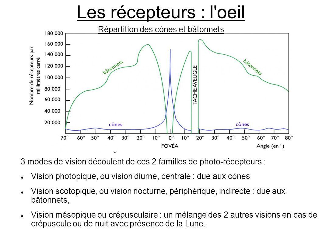 Les récepteurs : l'oeil 3 modes de vision découlent de ces 2 familles de photo-récepteurs : Vision photopique, ou vision diurne, centrale : due aux cô