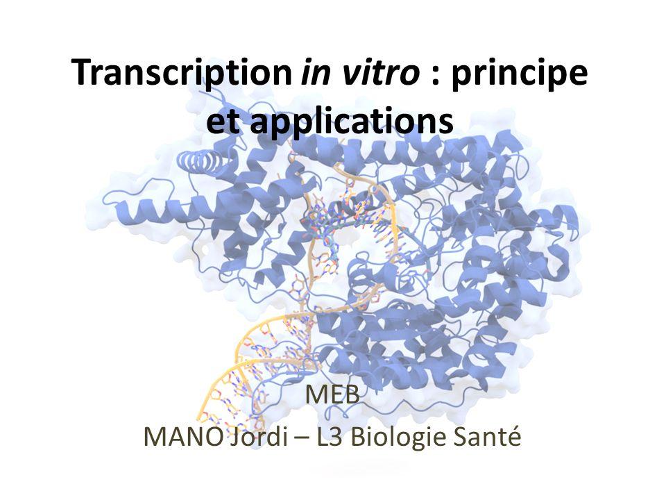 Principe Utilisation des principes de la transcription in vivo dans un système hors-cellule.