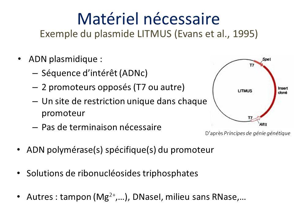 Matériel nécessaire ADN plasmidique : – Séquence dintérêt (ADNc) – 2 promoteurs opposés (T7 ou autre) – Un site de restriction unique dans chaque prom