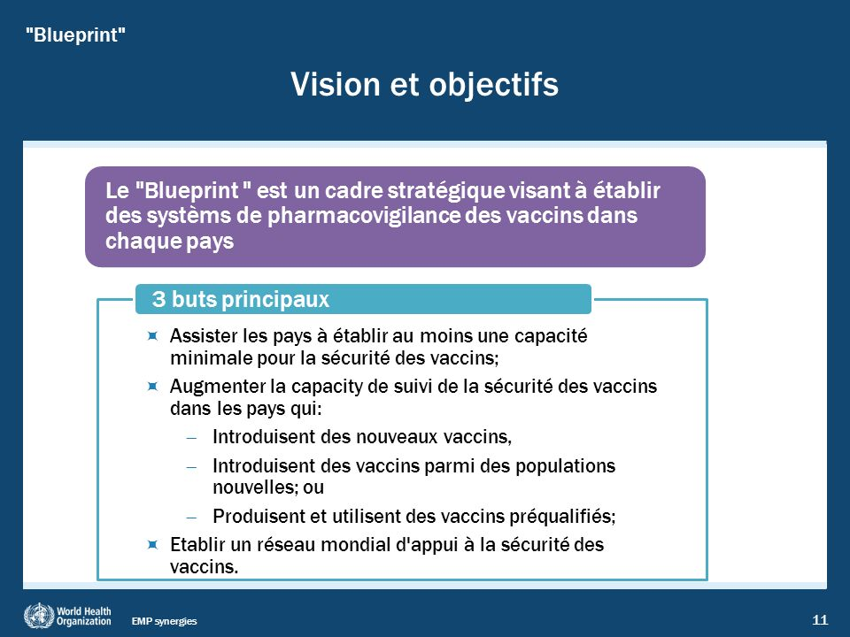 EMP synergies 11 Vision et objectifs