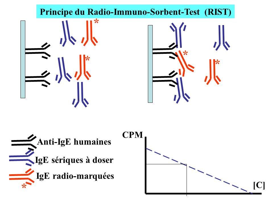 * * * * * Anti-IgE humaines IgE sériques à doser IgE radio-marquées CPM [C] Principe du Radio-Immuno-Sorbent-Test (RIST)