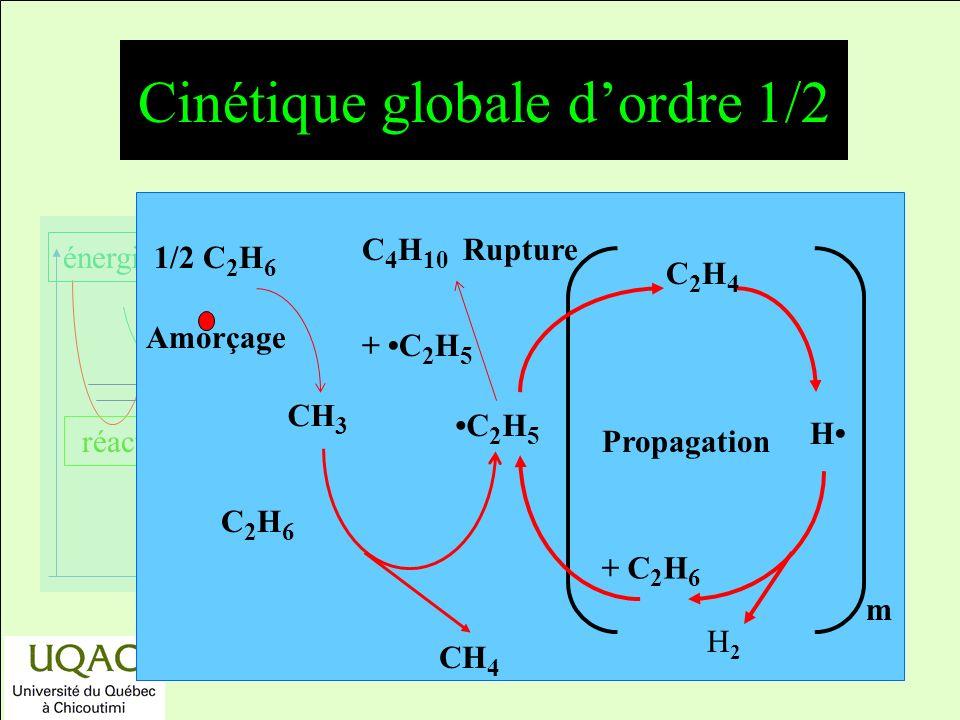 réactifs produits énergie temps Amorçage 1/2 C 2 H 6 CH 3 m Propagation H C2H4C2H4 C 4 H 10 Rupture + C 2 H 5 CH 4 C 2 H 6 C 2 H 5 + C 2 H 6 H2H2 Cinétique globale dordre 1/2