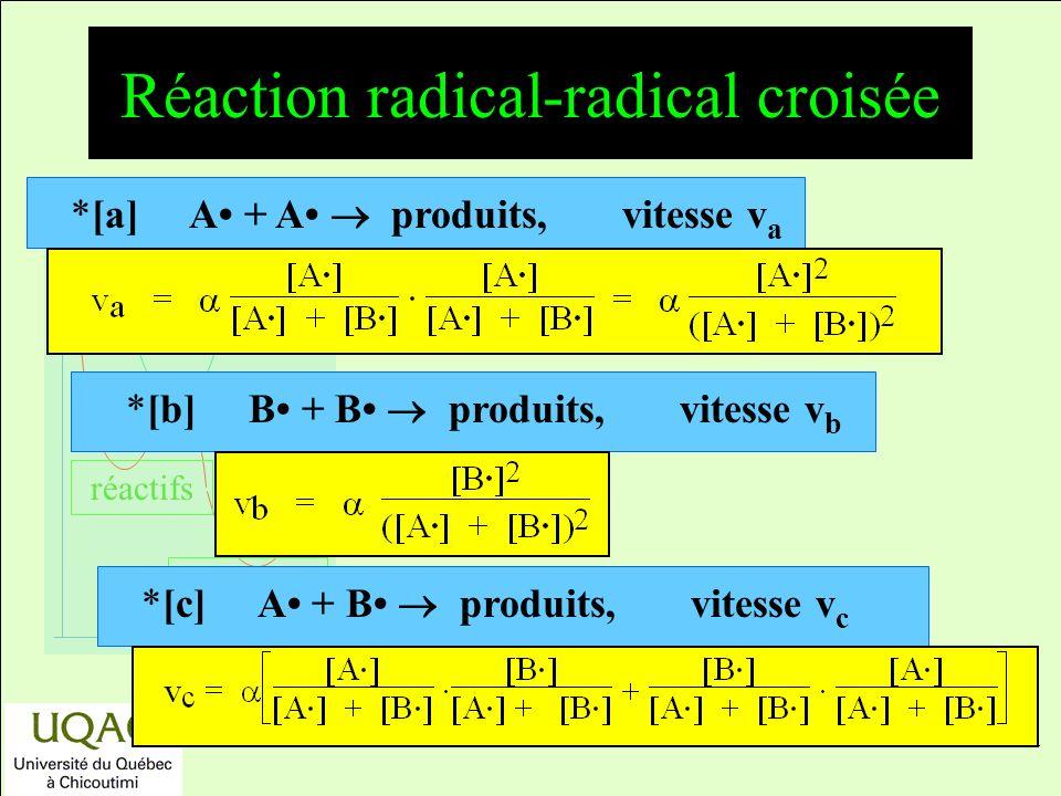 réactifs produits énergie temps Réaction radical-radical croisée *[a] A + A produits, vitesse v a *[b] B + B produits, vitesse v b *[c] A + B produits, vitesse v c
