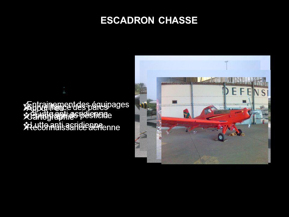 ESCADRON CHASSE Rallye Guerrier: Appui Feu Reconnaissance aérienne Epsilon: Entrainement des équipages CESSNA: Surveillance des parcs Cartographie Tur