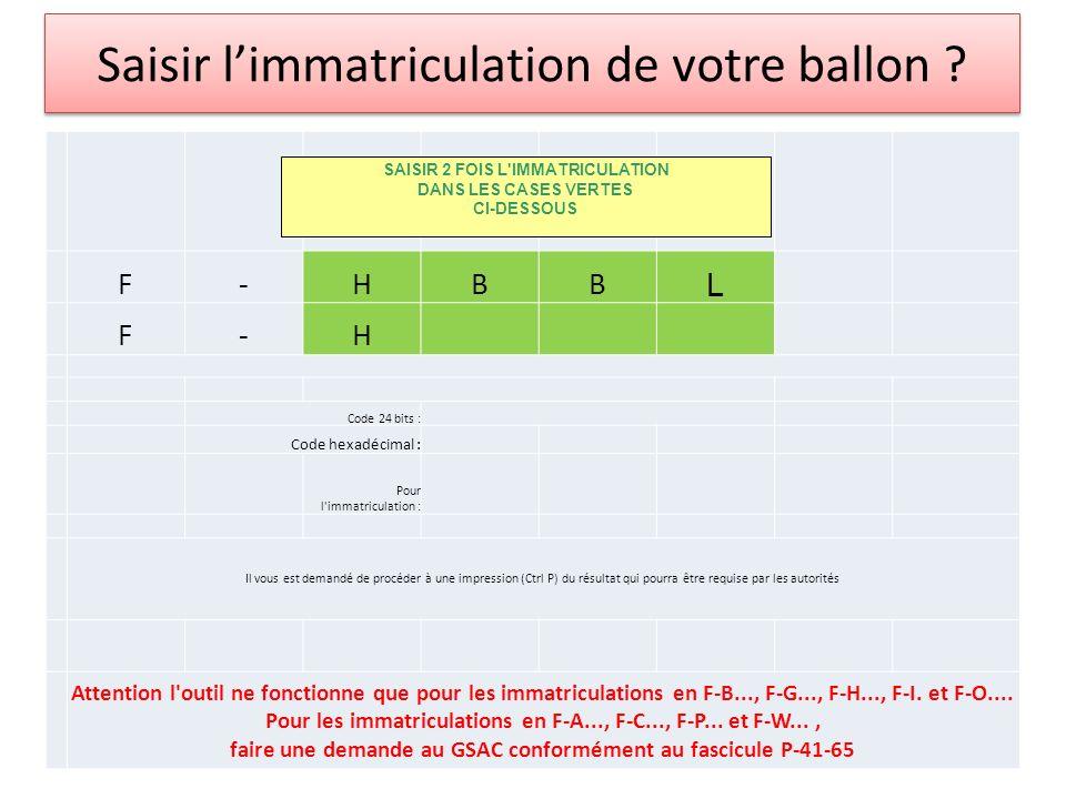 Saisir limmatriculation de votre ballon .