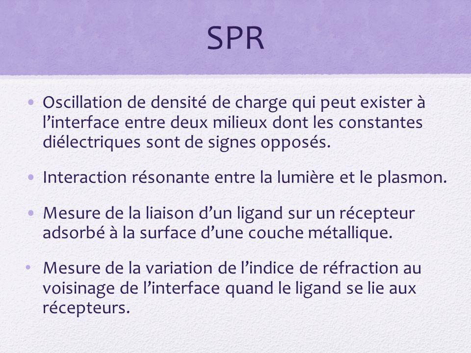 SPR Oscillation de densité de charge qui peut exister à linterface entre deux milieux dont les constantes diélectriques sont de signes opposés.
