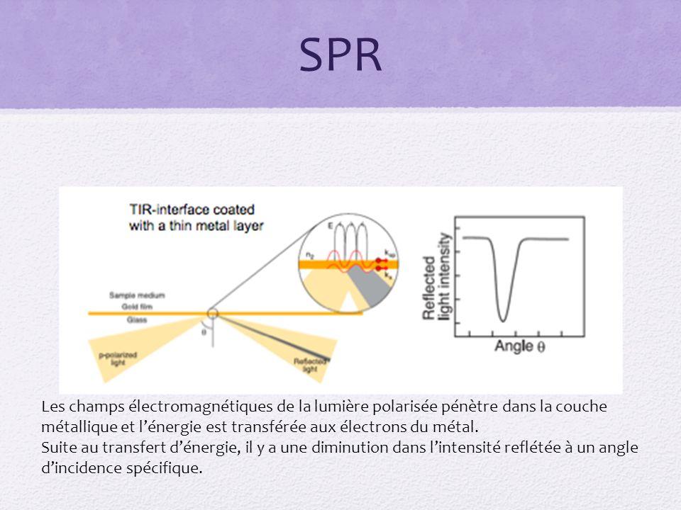 SPR Les champs électromagnétiques de la lumière polarisée pénètre dans la couche métallique et lénergie est transférée aux électrons du métal.