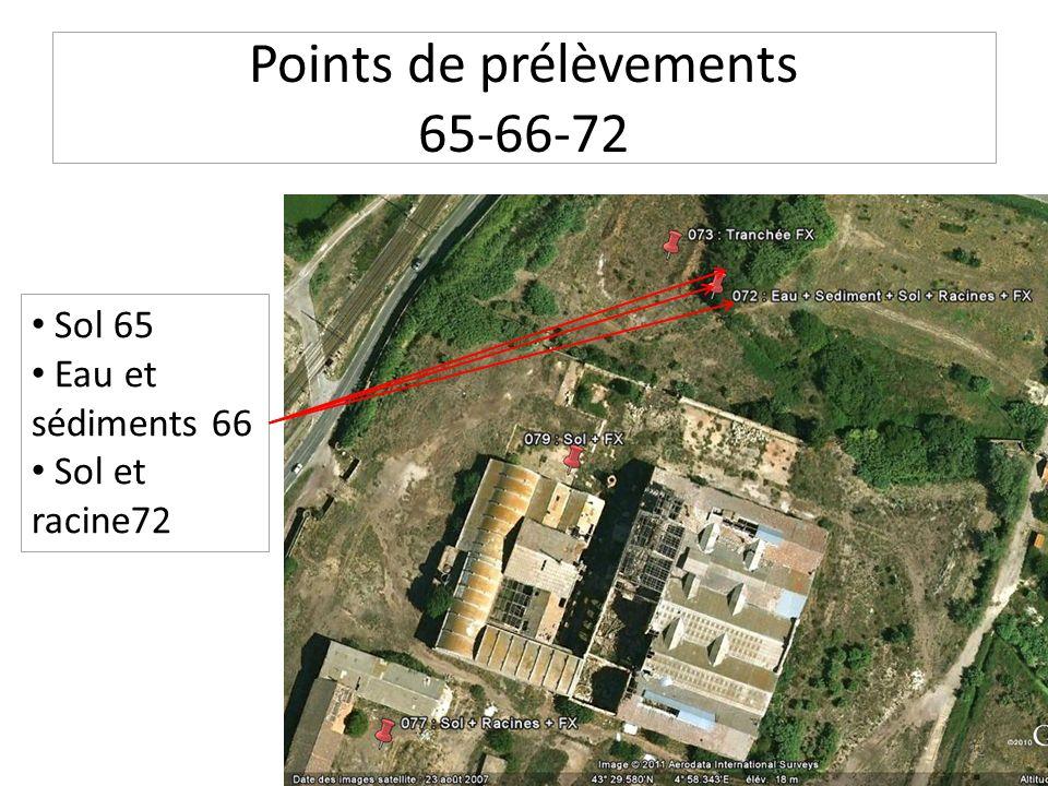 Points de prélèvements 65-66-72 Sol 65 Eau et sédiments 66 Sol et racine72 12