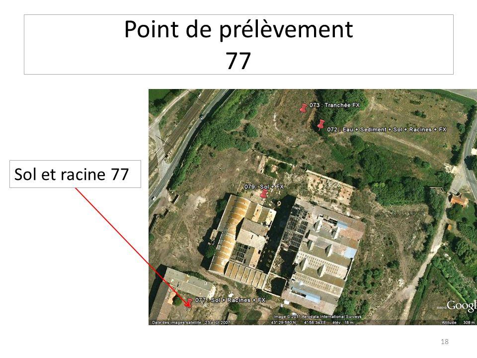 Point de prélèvement 77 Sol et racine 77 18