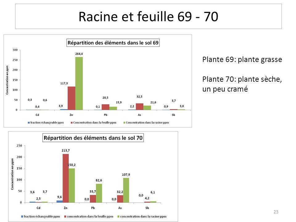 Racine et feuille 69 - 70 Plante 69: plante grasse Plante 70: plante sèche, un peu cramé 23