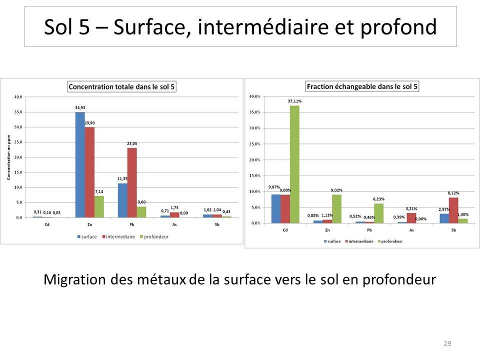 Sol 5 – Surface, intermédiaire et profond Migration des métaux de la surface vers le sol en profondeur 29