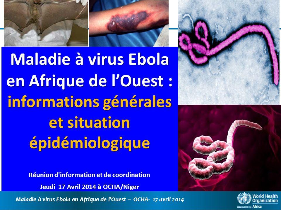 Maladie à virus Ebola en Afrique de lOuest – OCHA- 17 avril 2014 32 Actions menées au Niger : MSP et Partenaires 2 réunions du CNGE présidées par le Ministre, en présence du Représentant de lOMS et des autres partenaires; réunion du CRGE de Tillabéri Instructions ont été données pour le contrôle des animaux et produits dérivés.