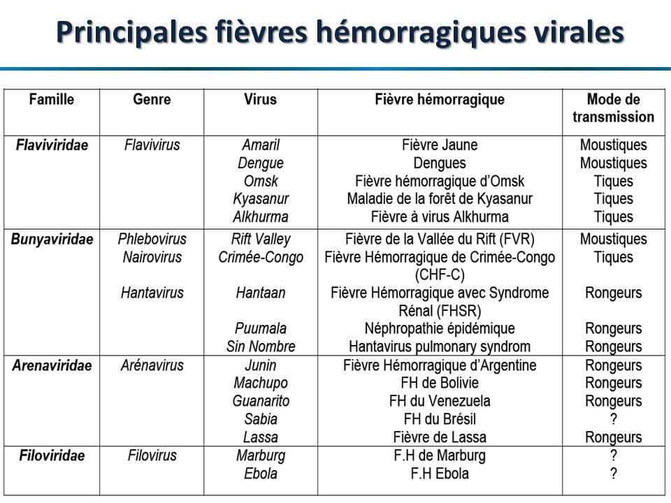 Maladie à virus Ebola en Afrique de lOuest – OCHA- 17 avril 2014 Le Virus Ebola Microscopie électronique 5