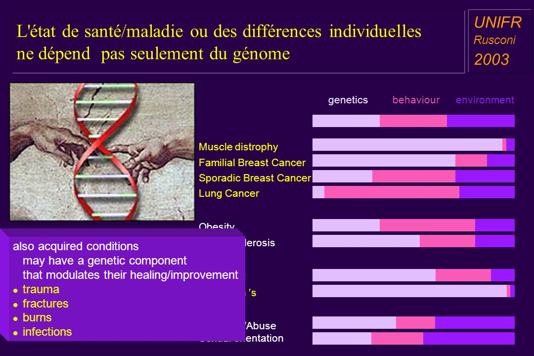 L état de santé/maladie ou des différences individuelles ne dépend pas seulement du génome a aa a aa UNIFR Rusconi 2003 geneticsbehaviourenvironment Muscle distrophy Obesity Artherosclerosis Alzheimer Parkinson s Drug Use/Abuse Sexual orientation Familial Breast Cancer Lung Cancer Sporadic Breast Cancer also acquired conditions may have a genetic component that modulates their healing/improvement trauma fractures burns infections