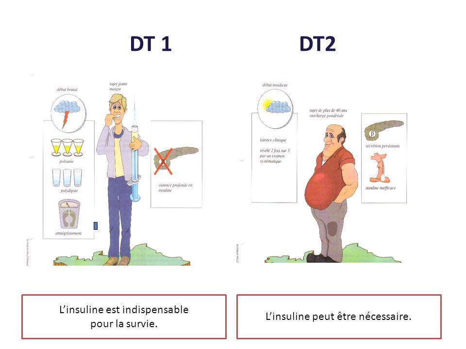DT 1 DT2 Linsuline est indispensable pour la survie. Linsuline peut être nécessaire.
