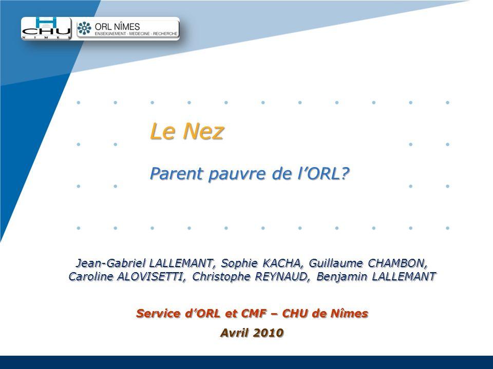 Company LOGO www.company.com Le Nez Parent pauvre de lORL? Jean-Gabriel LALLEMANT, Sophie KACHA, Guillaume CHAMBON, Caroline ALOVISETTI, Christophe RE