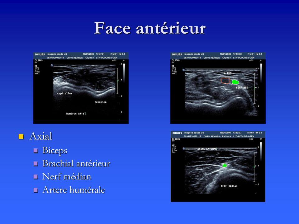 Face antérieur Axial Biceps Brachial antérieur Nerf médian Artere humérale