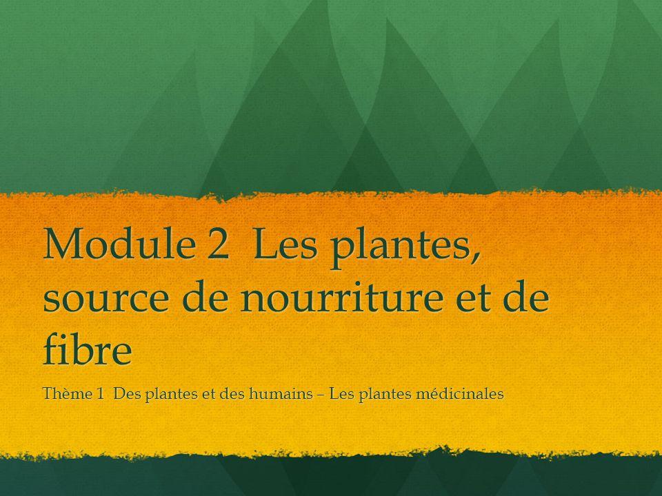 Module 2 Les plantes, source de nourriture et de fibre Thème 1 Des plantes et des humains – Les plantes médicinales