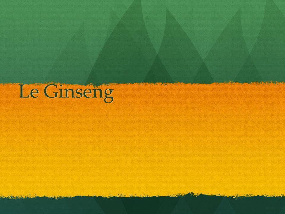 Le Ginseng