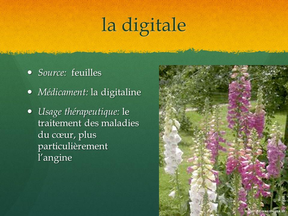 la digitale Source: feuilles Source: feuilles Médicament: la digitaline Médicament: la digitaline Usage thérapeutique: le traitement des maladies du c