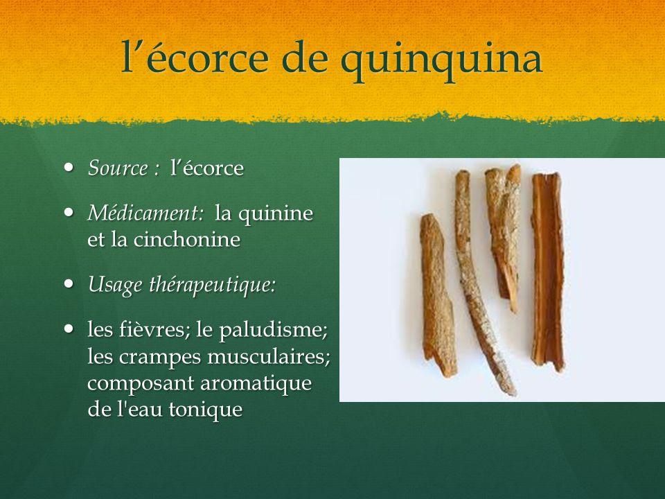 lécorce de quinquina Source : lécorce Source : lécorce Médicament: la quinine et la cinchonine Médicament: la quinine et la cinchonine Usage thérapeut