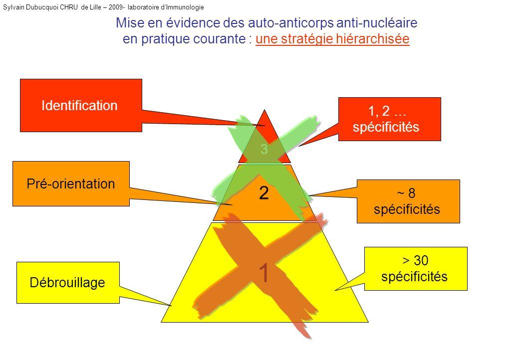 Sylvain Dubucquoi CHRU de Lille – 2009- laboratoire dImmunologie Mise en évidence des auto-anticorps anti-nucléaire en pratique courante : une stratég