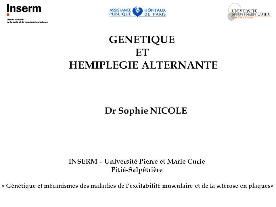 Prof Bertrand Fontaine Chirine El Baba
