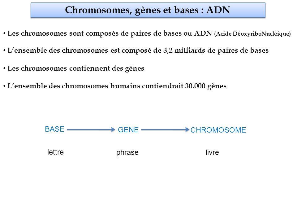 Gènes et protéines Lamaazertyuioqsdfghjklmaitresswxcvbnenousdonnebeauaqwzsxedccouptropdemlkjhgdevoirs chromosome Lamaazertyuioqsdfghjklmaitresswxcvbnenousdonnebeauaqwzsxedccouptropdemlkjhgdevoirs gène la maitresse nous donne beaucoup trop de devoirs exons LA MAITRESSE NOUS DONNE BEAUCOUP TROP DE DEVOIRS protéine Fonction cellulaire La protéine exerce une fonction cellulaire Un gène code pour une protéine
