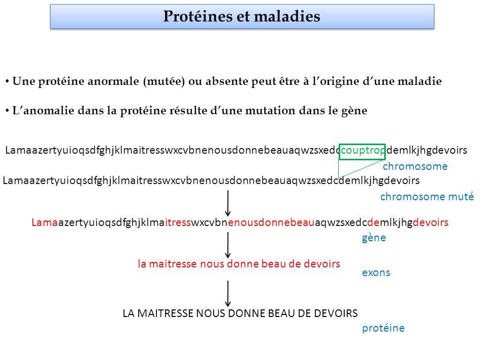 Protéines et maladies Une protéine anormale (mutée) ou absente peut être à lorigine dune maladie Lanomalie dans la protéine résulte dune mutation dans le gène trouver lanomalie parmi 3,2 milliards de lettres
