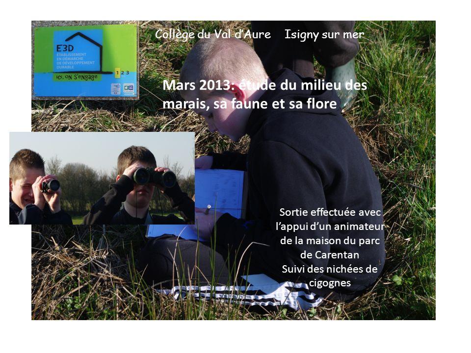 Collège du Val dAure Isigny sur mer Mars 2013: étude du milieu des marais, sa faune et sa flore Sortie effectuée avec lappui dun animateur de la maison du parc de Carentan Suivi des nichées de cigognes