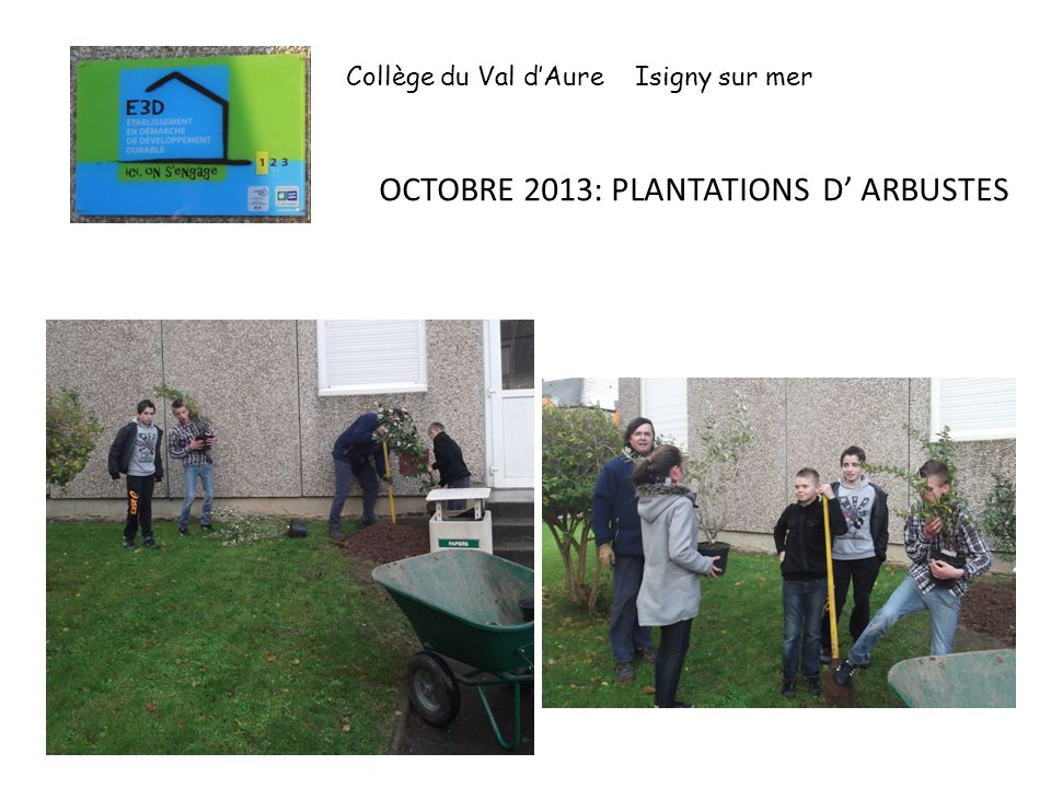 OCTOBRE 2013: PLANTATIONS D ARBUSTES