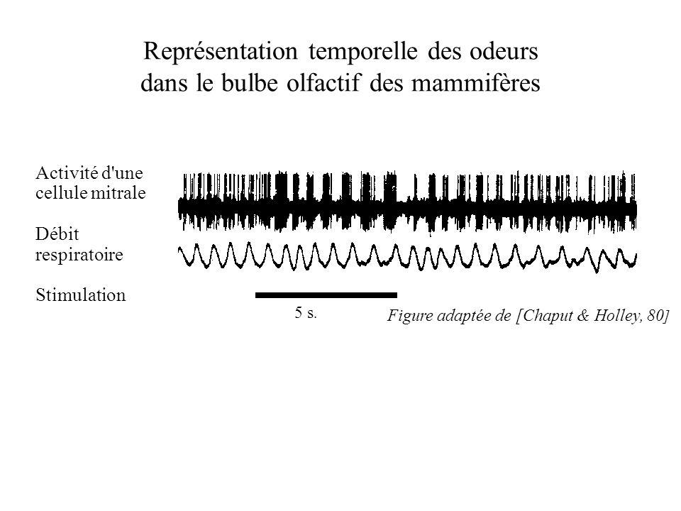 Représentation temporelle des odeurs dans le bulbe olfactif des mammifères Activité d'une cellule mitrale Débit respiratoire Stimulation 5 s. Figure a