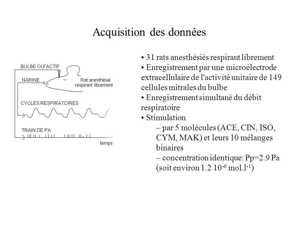 Acquisition des données temps CYCLES RESPIRATOIRES TRAIN DE PA NARINE BULBE OLFACTIF Rat anesthésié respirant librement 31 rats anesthésiés respirant