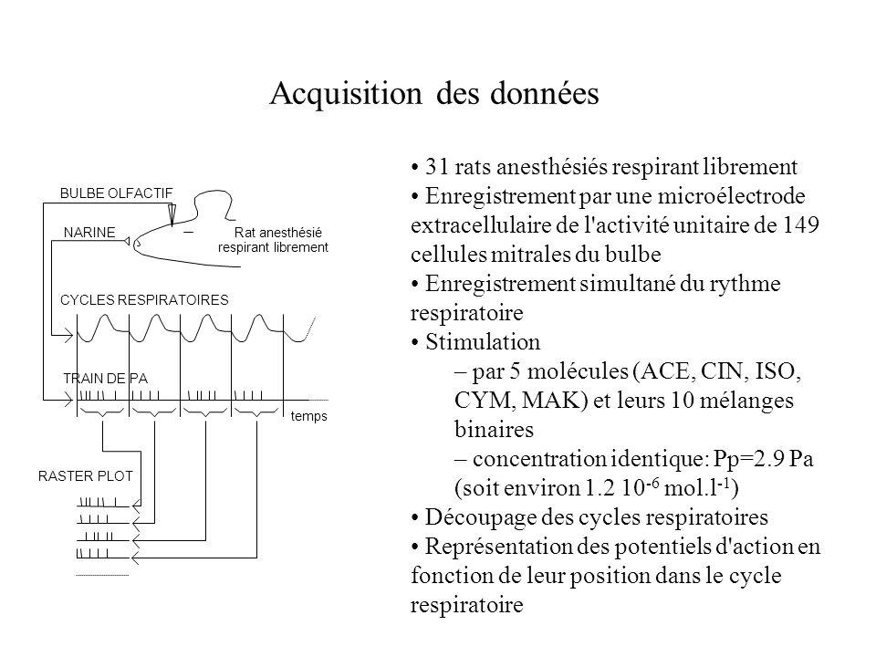 Acquisition des données temps CYCLES RESPIRATOIRES TRAIN DE PA NARINE BULBE OLFACTIF Rat anesthésié respirant librement RASTERPLOT 31 rats anesthésiés