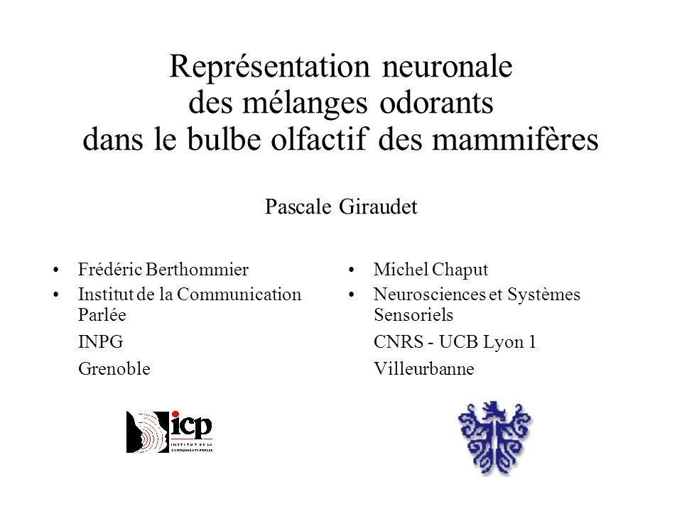 Frédéric Berthommier Institut de la Communication Parlée INPG Grenoble Michel Chaput Neurosciences et Systèmes Sensoriels CNRS - UCB Lyon 1 Villeurban