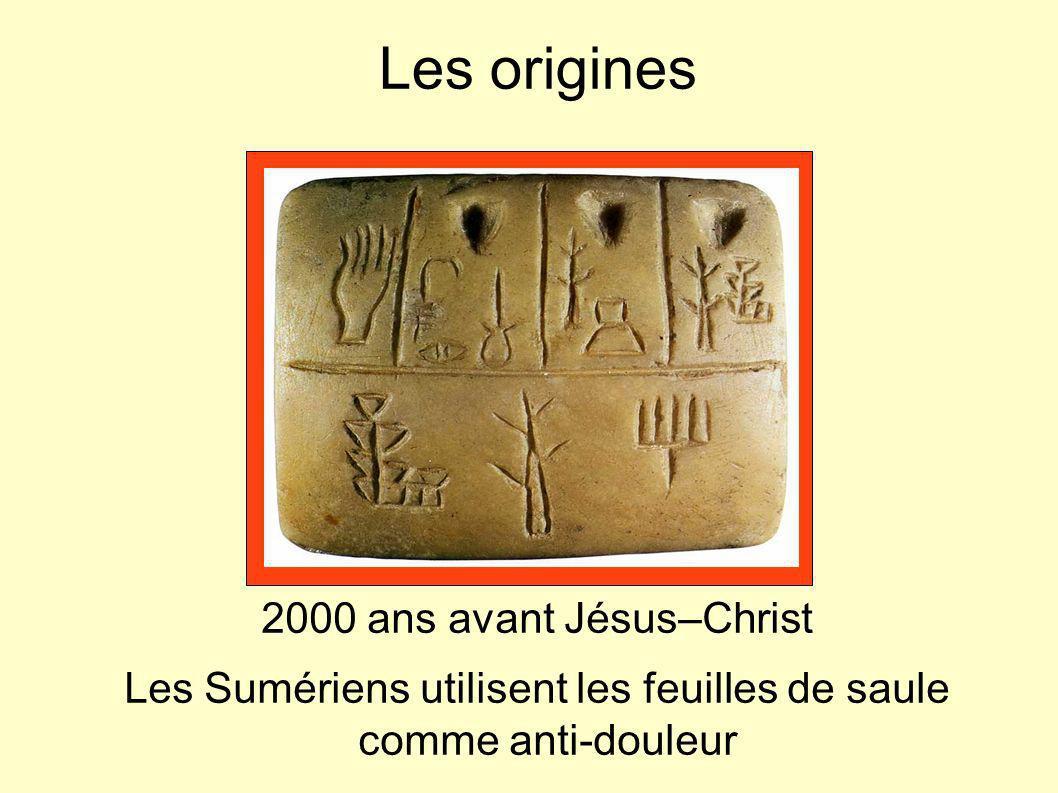 Les origines 2000 ans avant Jésus–Christ Les Sumériens utilisent les feuilles de saule comme anti-douleur