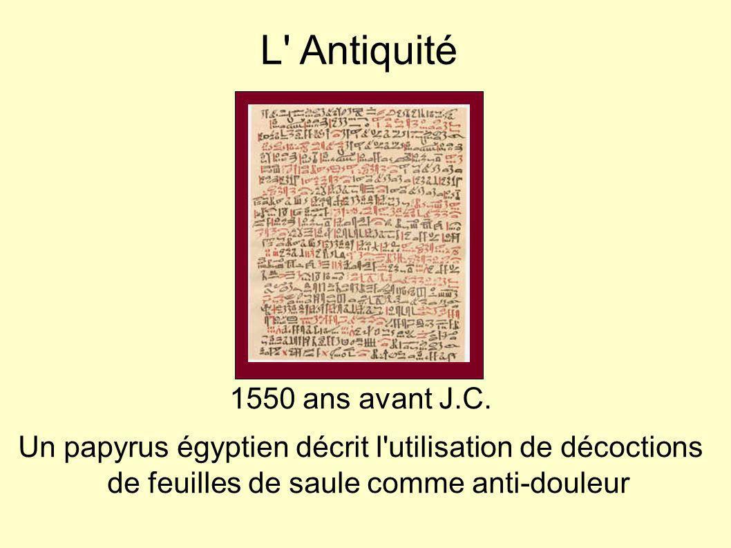 L' Antiquité 1550 ans avant J.C. Un papyrus égyptien décrit l'utilisation de décoctions de feuilles de saule comme anti-douleur