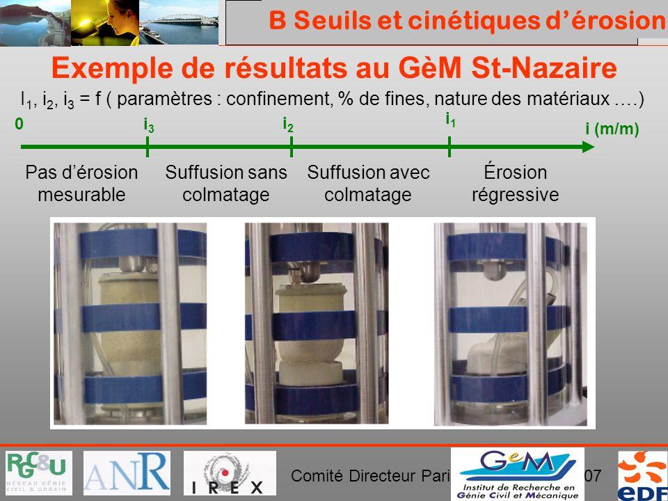 PROJET ERINOH Comité Directeur Paris 29 novembre 2007 i (m/m) 0i3i3 i2i2 i1i1 Pas dérosion mesurable Suffusion sans colmatage Suffusion avec colmatage