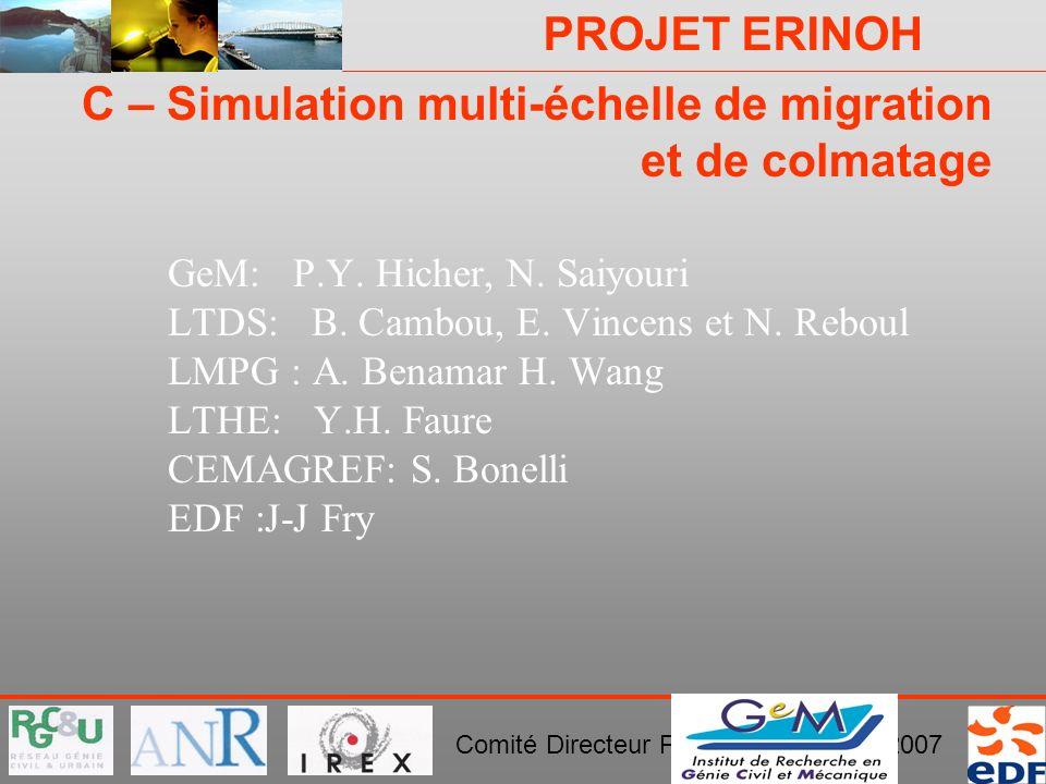 PROJET ERINOH Comité Directeur Paris 29 novembre 2007 C – Simulation multi-échelle de migration et de colmatage GeM: P.Y. Hicher, N. Saiyouri LTDS: B.