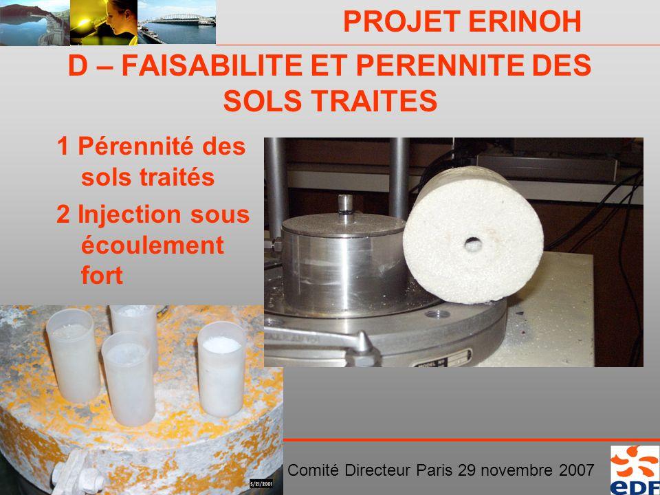 PROJET ERINOH Comité Directeur Paris 29 novembre 2007 D – FAISABILITE ET PERENNITE DES SOLS TRAITES 1 Pérennité des sols traités 2 Injection sous écou