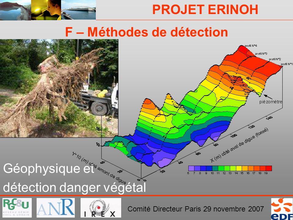 PROJET ERINOH Comité Directeur Paris 29 novembre 2007 F – Méthodes de détection Géophysique et détection danger végétal