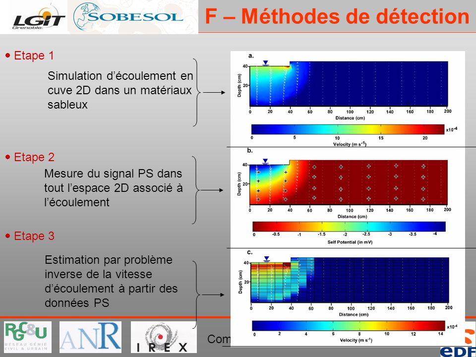 PROJET ERINOH Comité Directeur Paris 29 novembre 2007 Simulation découlement en cuve 2D dans un matériaux sableux Mesure du signal PS dans tout lespac