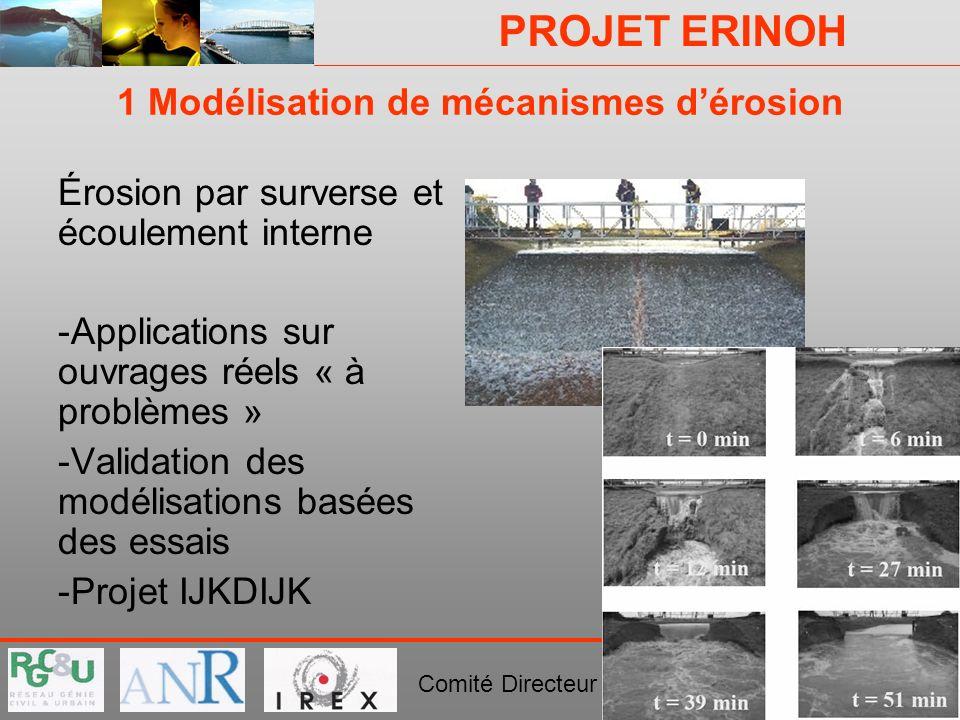 PROJET ERINOH Comité Directeur Paris 29 novembre 2007 1 Modélisation de mécanismes dérosion Érosion par surverse et écoulement interne -Applications s