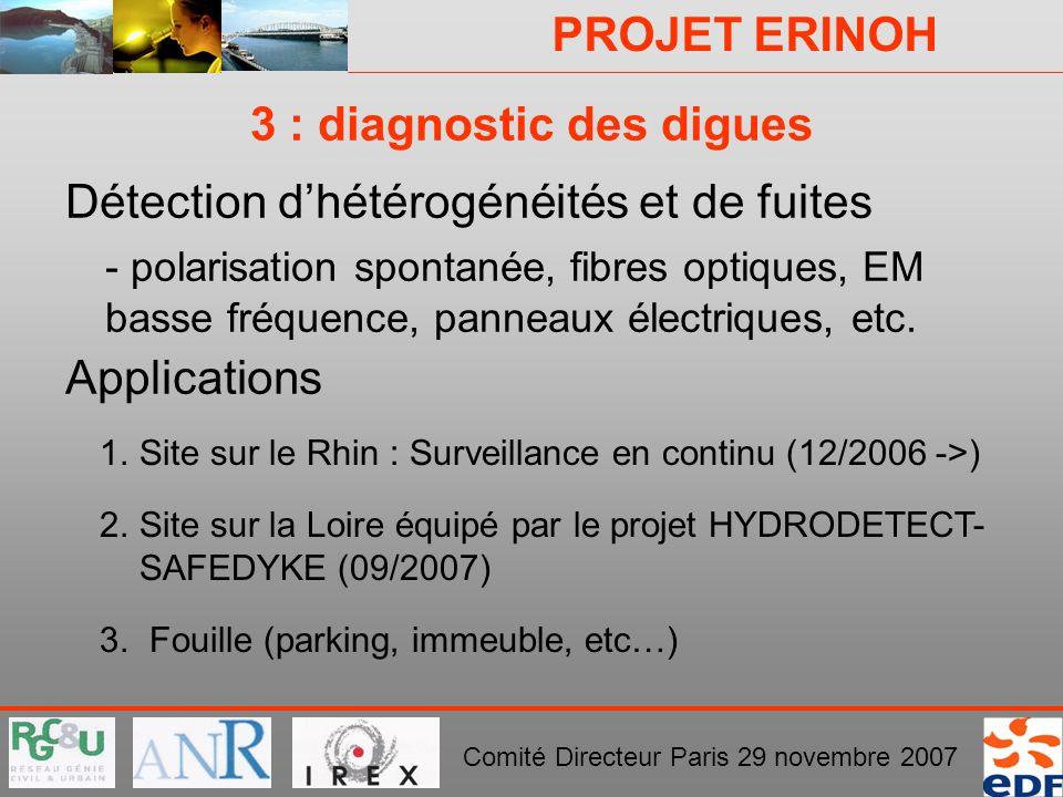 PROJET ERINOH Comité Directeur Paris 29 novembre 2007 3 : diagnostic des digues Détection dhétérogénéités et de fuites - polarisation spontanée, fibre