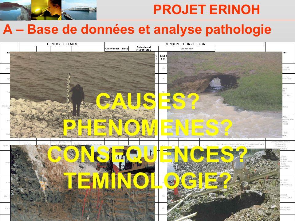 PROJET ERINOH Comité Directeur Paris 29 novembre 2007 A – Base de données et analyse pathologie CAUSES? PHENOMENES? CONSEQUENCES? TEMINOLOGIE?